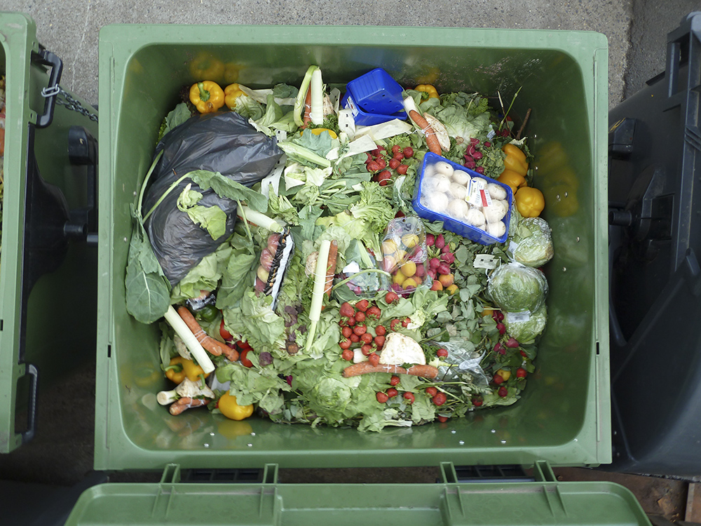 Food Waste WEB