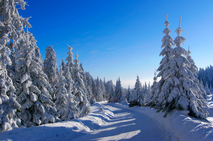One of the many snowmobile trails in Voyageur National Park in northern Minnesota // Photo via Voyagaire Lodge