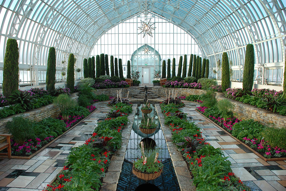 The Como Park Zoo Conservatory during the 2017 Winter Flower Show // Photo courtesy Como Park Zoo Conservatory Facebook