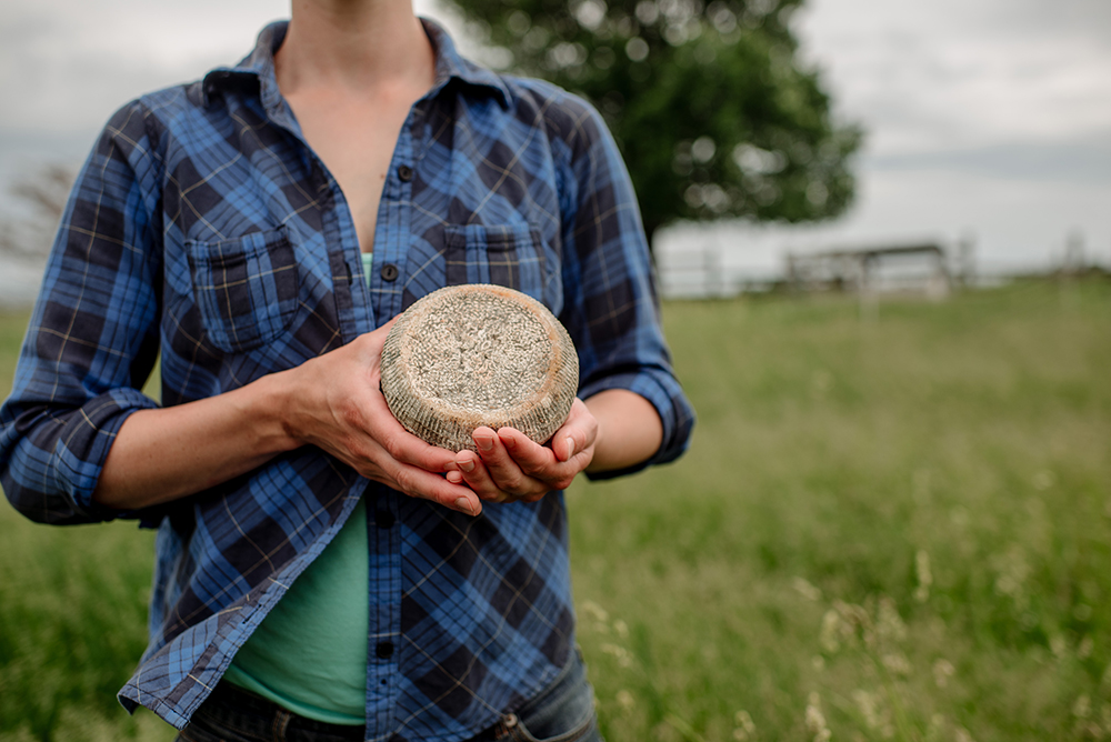 Capra Nera's Ciccio, a basket-formed goat cheese made from raw milk and aged for 60 days // Photo by Becca Dilley