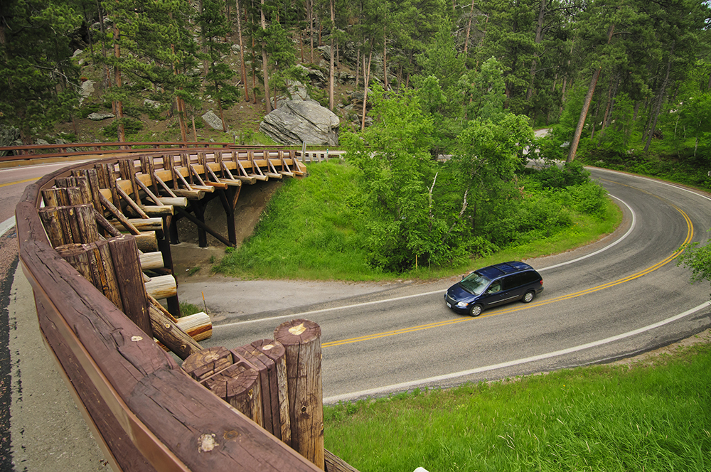 Part of the drive through Custer State Park // Photo courtesy South Dakota Tourism
