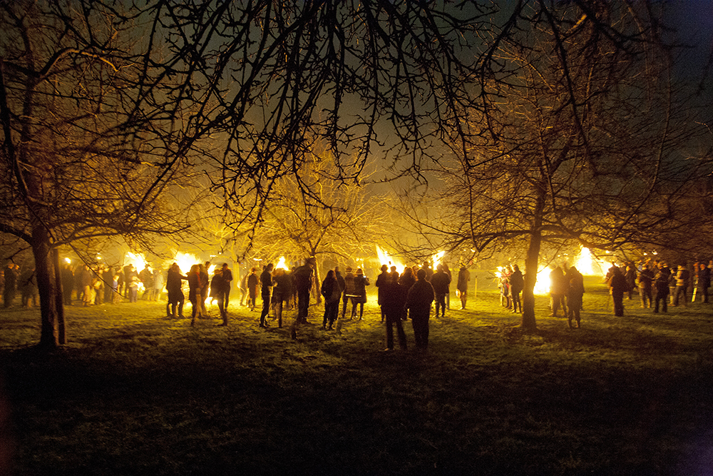 A Wassail ceremony in an orchard // Photo by Bill Bradshaw, @iamcider