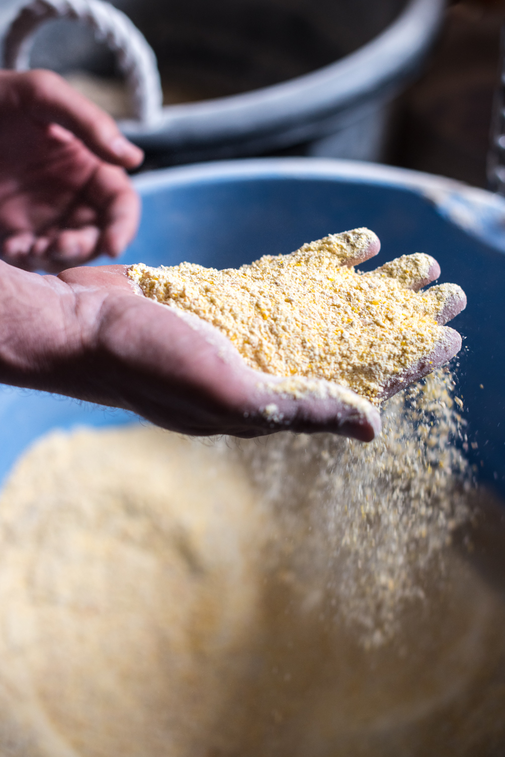 Cornmeal is the most popular flour ground at Schech's Mill // Photo by Kevin Kramer, The Growler