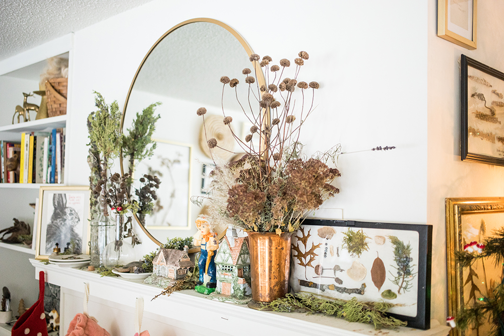 Some of the foraged nature inside their house // Photo by Tj Turner